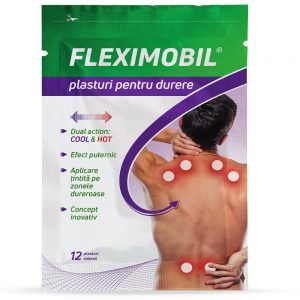 Fleximobil plasturi pentru durere, 12 bucăți, Fiterman Pharma