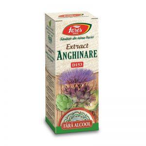 Extract de Anghinare fără alcool, D153, 50 ml, Fares